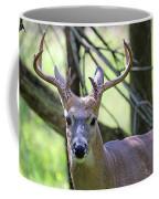 White Tailed Buck Portrait I Coffee Mug