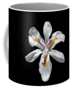 Wild Iris On Black  Coffee Mug by Alison Frank