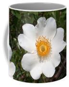 Wild Texas Rose, White Coffee Mug