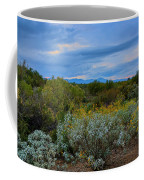 Winter In The Valley  H1933 Coffee Mug by Mark Myhaver