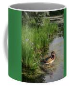 Wood Duck And Iris Coffee Mug by Patti Deters