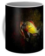 Yellow Blunthead Cichlid Dance Coffee Mug