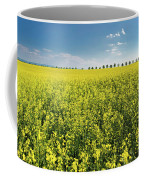 Yellow Canola Field And Blue Sky Spring Landscape Coffee Mug