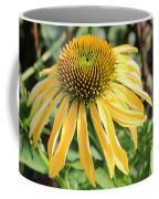 Yellow Cone Flower Coffee Mug