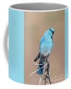 You Lookiing At Me Coffee Mug