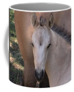 Young Colt Coffee Mug