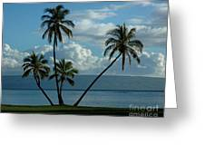 A Little Bit Of Paradise Greeting Card
