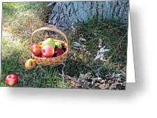 Apples Everywhere Greeting Card