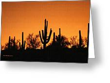 Arizona Sagurao Sunset Greeting Card
