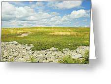 Blueberry Field With Blue Sky And Clouds In Maine Greeting Card