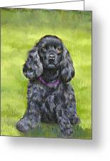 Budwood The Black Cocker Spaniel Greeting Card