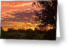 Canyon Dechelly Sunset In Copper And Gold Greeting Card