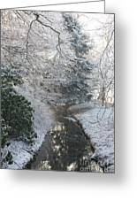 Creek Reflection Greeting Card