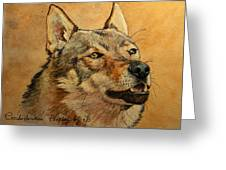 Czechoslovakian Wolfdog Portrait Greeting Card