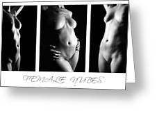 Female Nudes 3 Greeting Card
