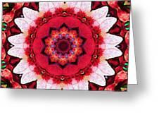 Floral Abundance  Greeting Card