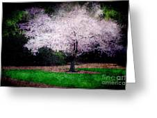 Ghostly Spring Greeting Card by Bobbi Feasel