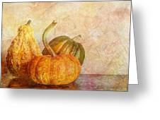 Gourd And Pumpkins II Greeting Card