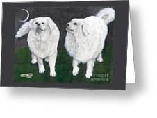 Great Pyrenees Dogs Night Sky Cathy Peek Animal Art Greeting Card