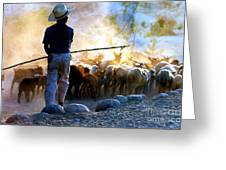 Herder Going Home In Mexico Greeting Card