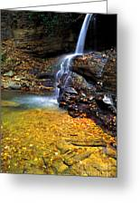 Holly River State Park Upper Falls Greeting Card