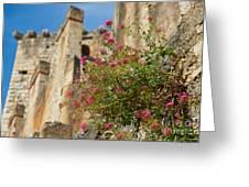 Italian Ruins In The Near Of The Lake Garda Greeting Card