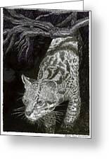 Jaguar Or Jacaranda  Greeting Card