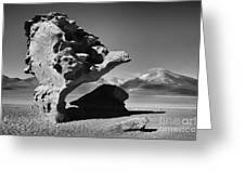 Landscape Of Bolivia Greeting Card