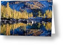Larch Tree Reflection In Leprechaun Lake Greeting Card