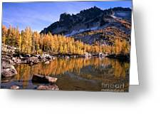 Larches Line Leprechaun Lake Greeting Card