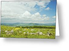 Large Blueberry Field With Mountains And Blue Sky In Maine Greeting Card by Keith Webber Jr