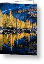 Leprechaun Lake Larches Greeting Card