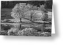 Long Pond On Mount Desert Island In Maine Greeting Card