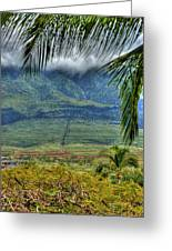 Maui Foot Hills Greeting Card