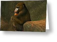 Mind Of A Mandrill Greeting Card