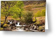 Nant Gwynant Waterfalls Vii Greeting Card