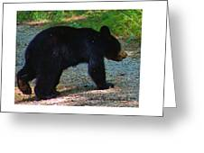 One Of Two Cubs Greeting Card