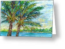 Palm Breezes Greeting Card