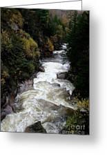 Pemigewasset River White Mountains Greeting Card