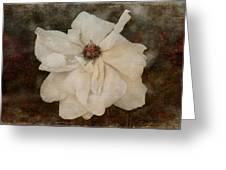 Perennial Gardens - Fall #02 Greeting Card