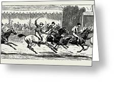Prince Winning The Half-mile Pony Race For The Prince Greeting Card