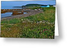 Rocky Harbour In Gros Morne Np-nl Greeting Card