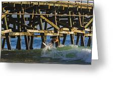 Surfer Dude 5 Greeting Card