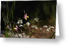 Tall Corydalis Greeting Card