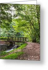 The Bridge Birches Valley Cannock Chase Greeting Card