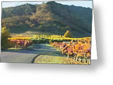 The Hills Of Clos La Chance Winery Greeting Card