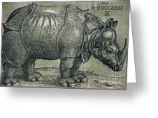 The Rhinoceros Greeting Card by Albrecht Durer