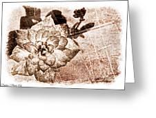 Thumbelina Rose - Miniature Rose - Digital Paint II Greeting Card