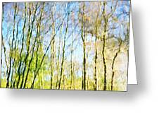 Tree Reflections Abstract Greeting Card