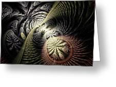 Trilobite Trail Greeting Card